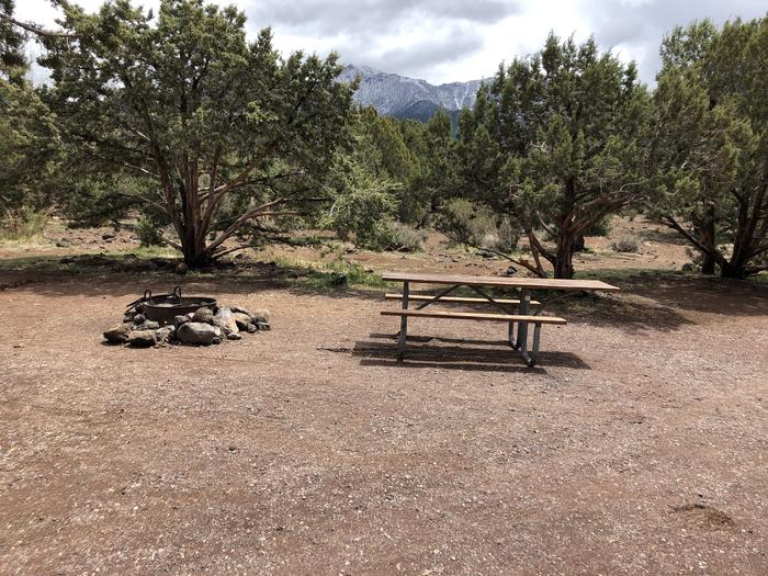 Site 15 Campsite Picnci Table and Fire Ring