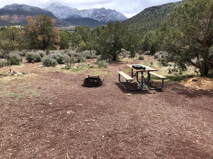 Site 13 CampsitePicnic Table and Fire Ring