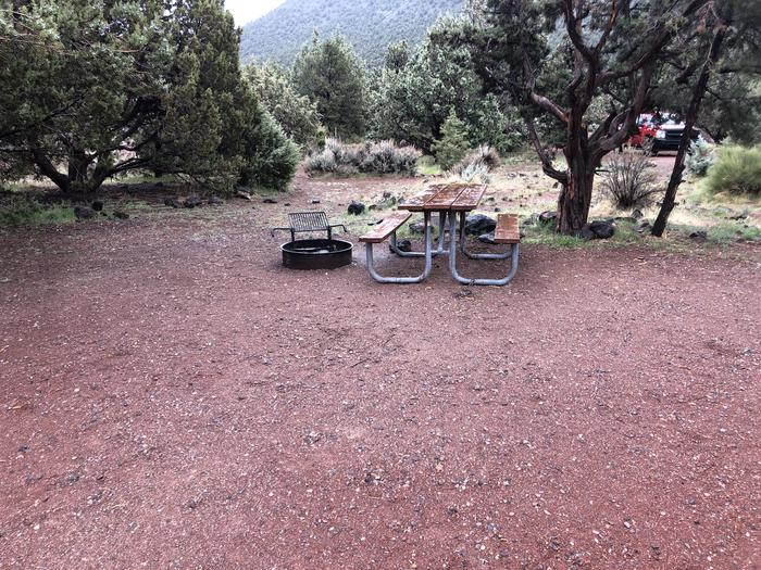 Site 1 CampsitePicnic Table and Fire Ring
