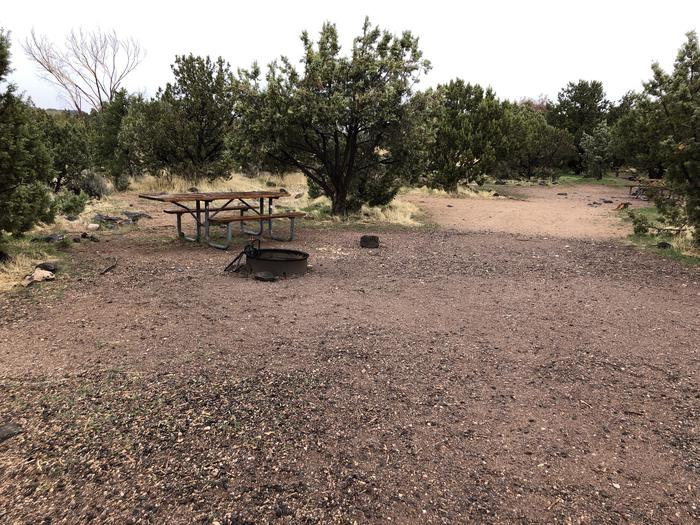 Site 9 CampsitePicnic Table and Fire Ring