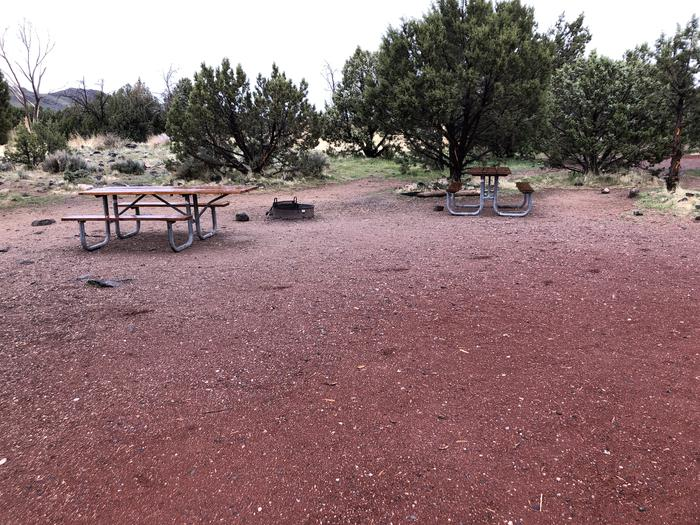Site 7 CampsitePicnic Table and Fire Ring
