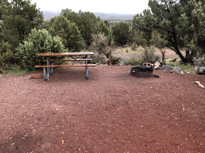 Site 8 CampsitePicnic Table and Fire Ring