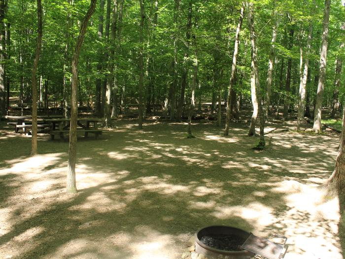 Group campsite ASpring photo of Turkey Run Group Campground site A