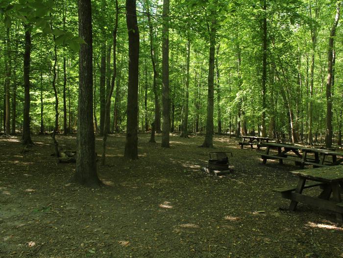 Site CSpring photo of Turkey Run group Campground site C