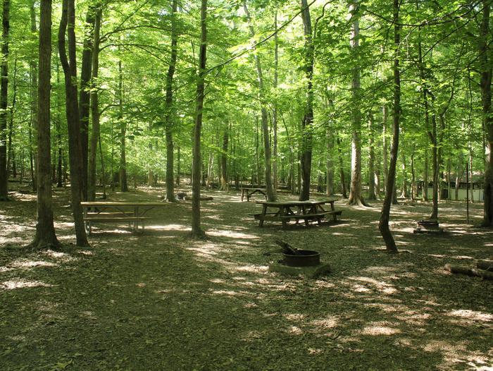 Site ESpring photo of Turkey Run Group Campground site E