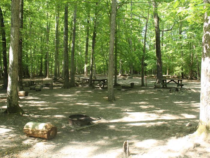 Site FSpring photo of Turkey Run Group Campground site F
