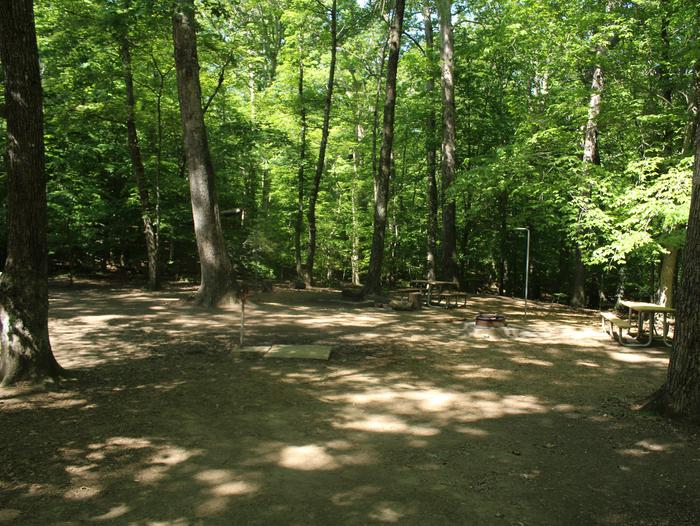 Camp site GSpring photo of Turkey Run Group Campground site G