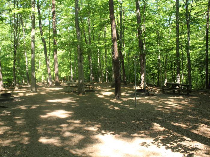 Site HSpring photo of Turkey Run Group Campground site H