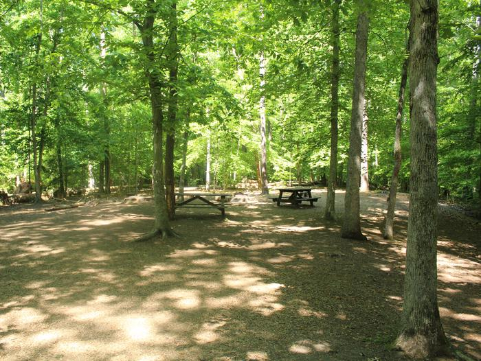 Site ISpring photo at Turkey Run Group Campground site I