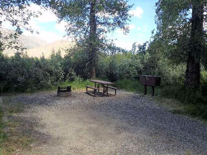 Wapiti Campsite 33 - Picnic Area, Picnic Table, fire ring, bear boxWapiti Campsite 33 - Picnic Area