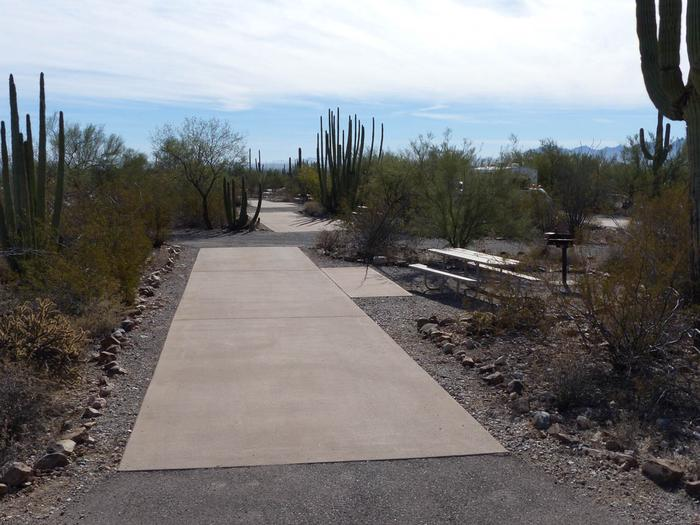 Pull-thru campsite with picnic table and grill, cactus and desert vegetation surround site.  Site 020
