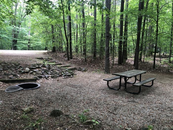 Primitive site with 6 stairs to dining area