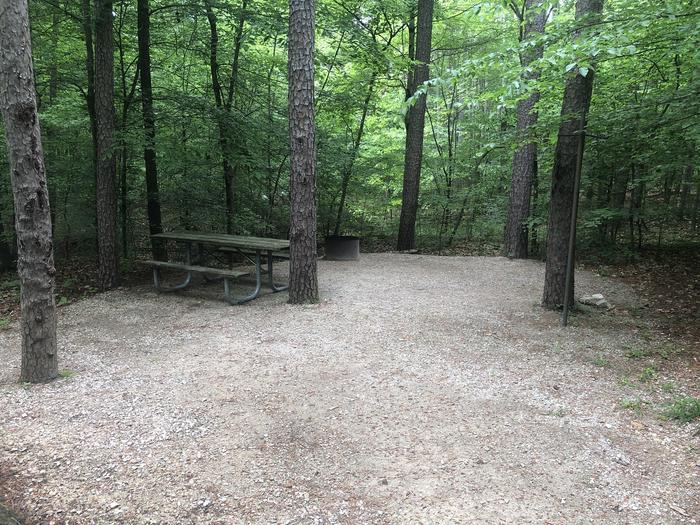 Small primitive site