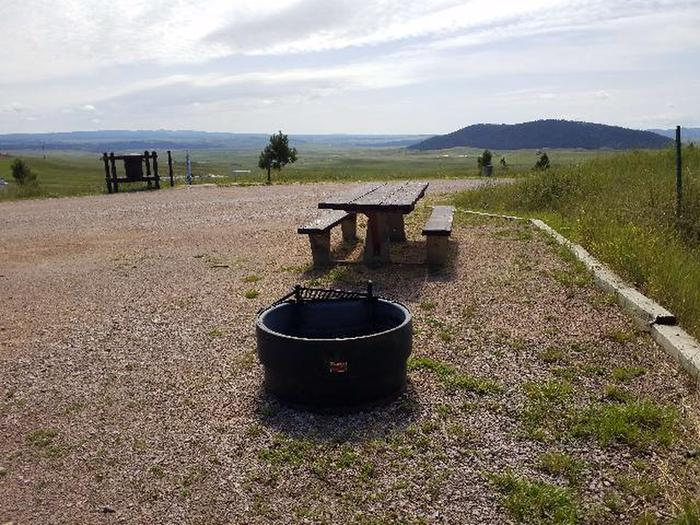 Picnic table and fire ring at site 1Campsite 1