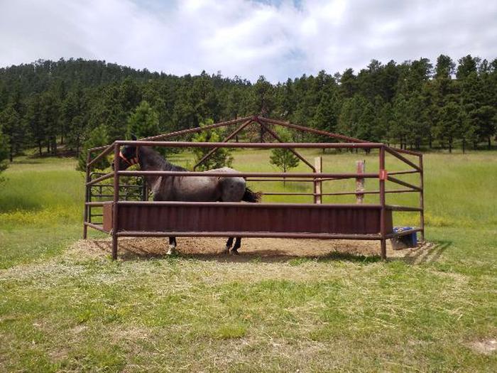 Horse in pen near Site 1Horse pen near Site 1