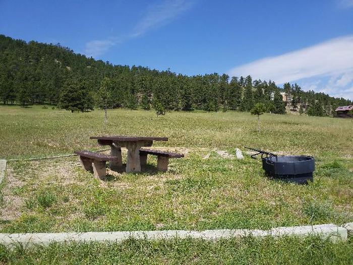 Picnic table and fire ring at Site 4Site 4