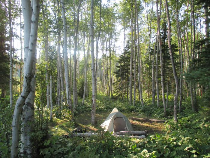 Lake Whittlesey Tent SitePaddling the interior of Isle Royale will bring you to the most remote campgrounds in the park.