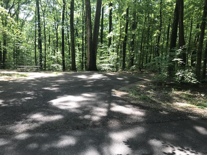 Gravel slope to picnic fire ring areaShorter paved site