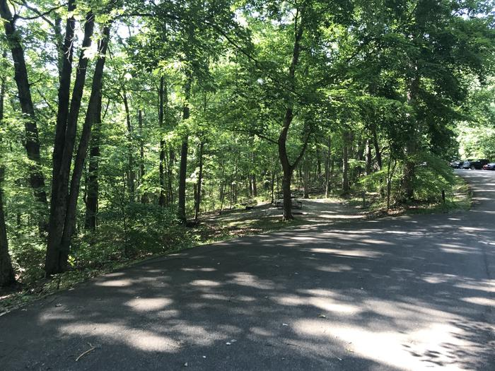 A roadside site with electric paved parking area and about step down onto the gravel portion that supports your picnic table, fire ring and electric pedestal