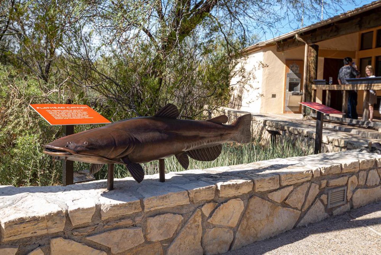 Outdoor ExhibitsOutdoor exhibits highlight the natural features along the Rio Grande