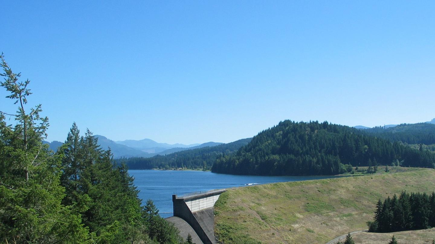 Earth Dam, Concrete Spillway, with lake and trees in the backgroundDorena Lake and Dam