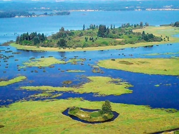 Fern Ridge lake aerialFern Ridge Lake