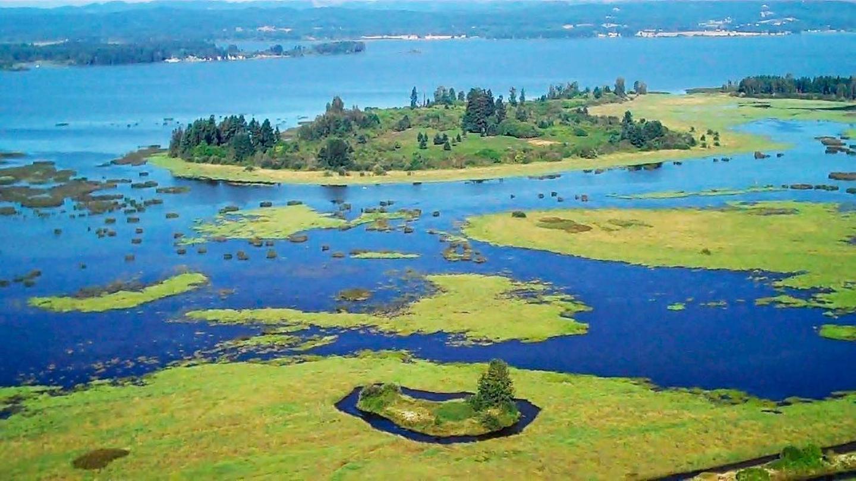 Aerial view of Fern Ridge LakeFern Ridge Lake