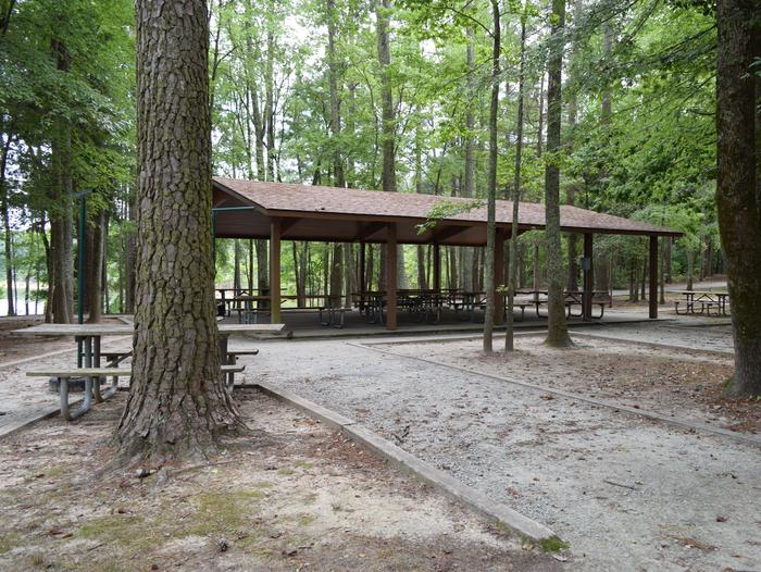 Piney Woods Group Camping ShelterWelcome to Piney Woods Group Camping Area! This is a picture of the shelter that is located within the area. The shelter has grills, picnic tables and electricity. There are also water spigots located near-by.