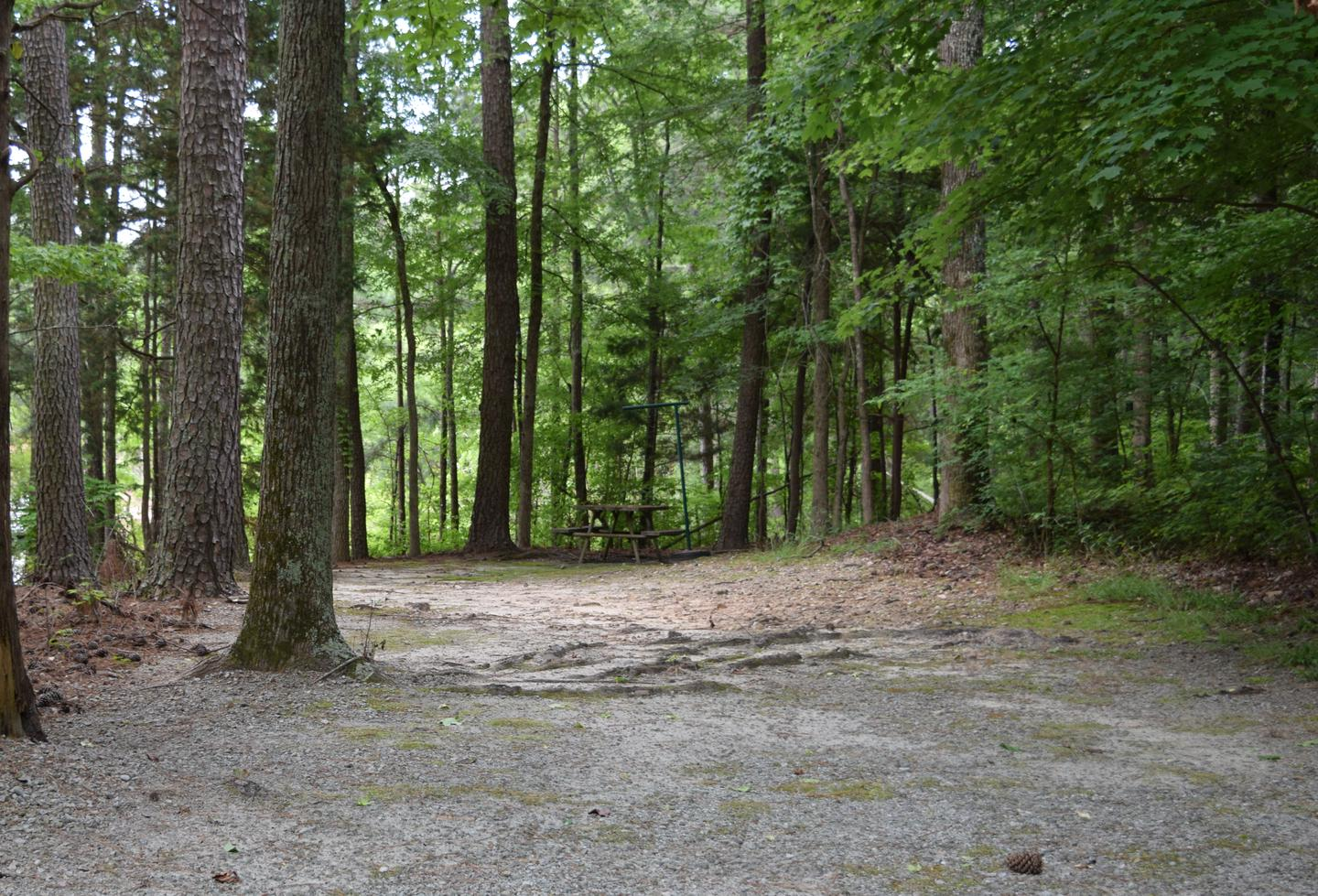 Piney Woods CampsiteWelcome to Piney Woods Group Camping Area! This is a picture of one of the campsites within Piney Woods Group Camping Area. These campsites are designed for tent campers. Some of these campsites have campsite posts with them while others do not. Not all campsites are gravel; some of them are more dirt.