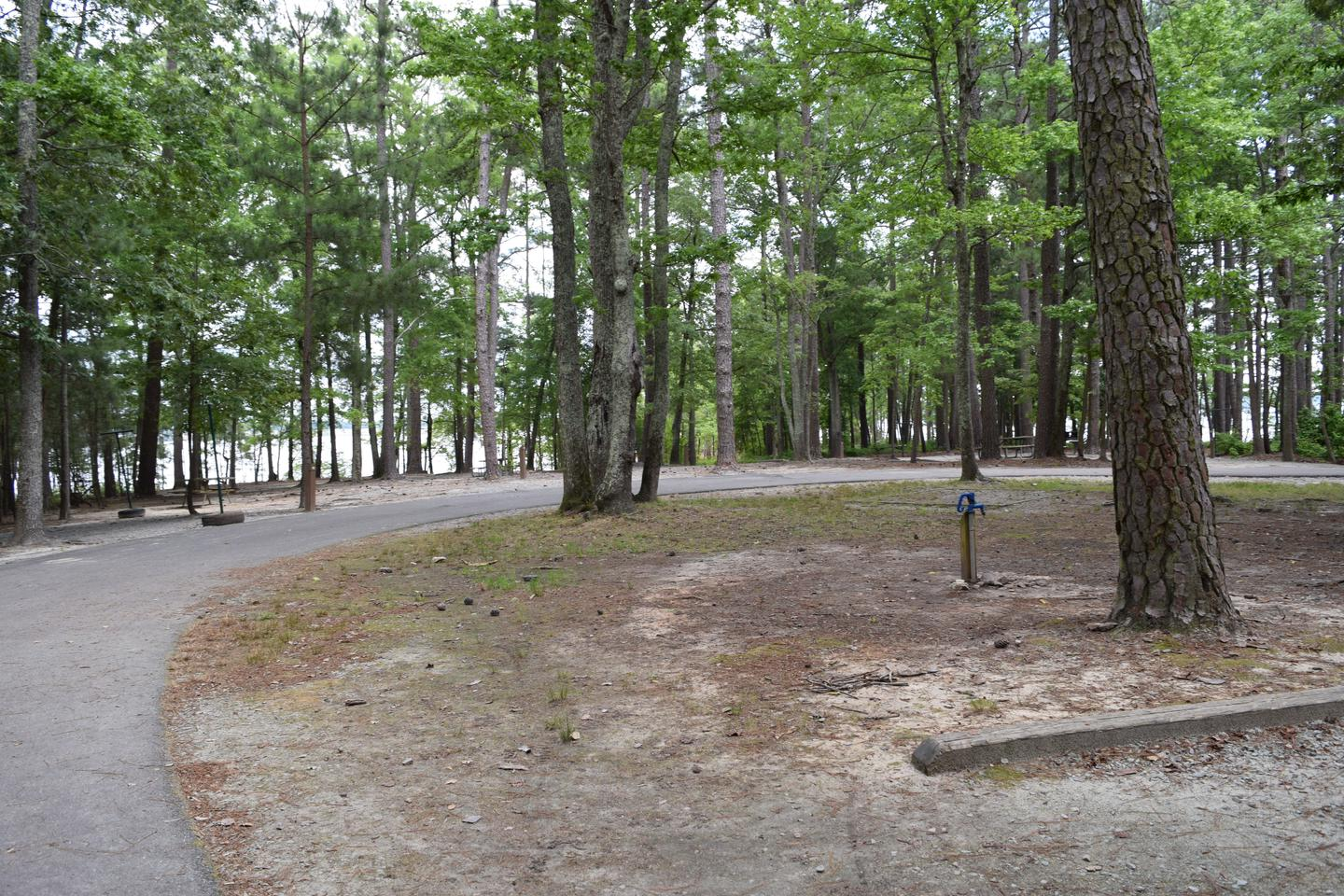 Piney Woods Group Camping AreaWelcome to Piney Woods Group Camping Area! This is a picture of some of the campsites located in the back part of Piney Woods. In this picture you can see the water spigots located near the shelter as well as some of the campsites with campsite posts in the back ground.