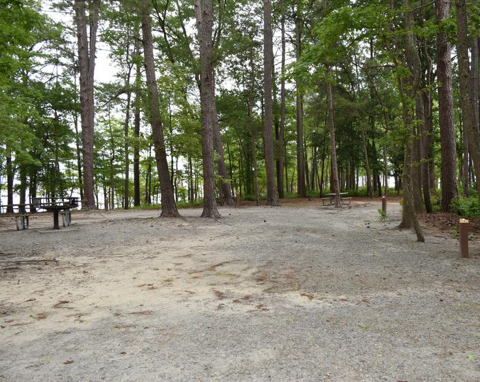 Piney Woods Group Camping Welcome to Piney Woods Group Camping Area! This is a picture of one of the campsites within Piney Woods Group Camping Area. These campsites are designed for tent campers. Some of these campsites have campsite posts with them while others do not. Not all campsites are gravel; some of them are more dirt. There are also larger grills located throughout the area.