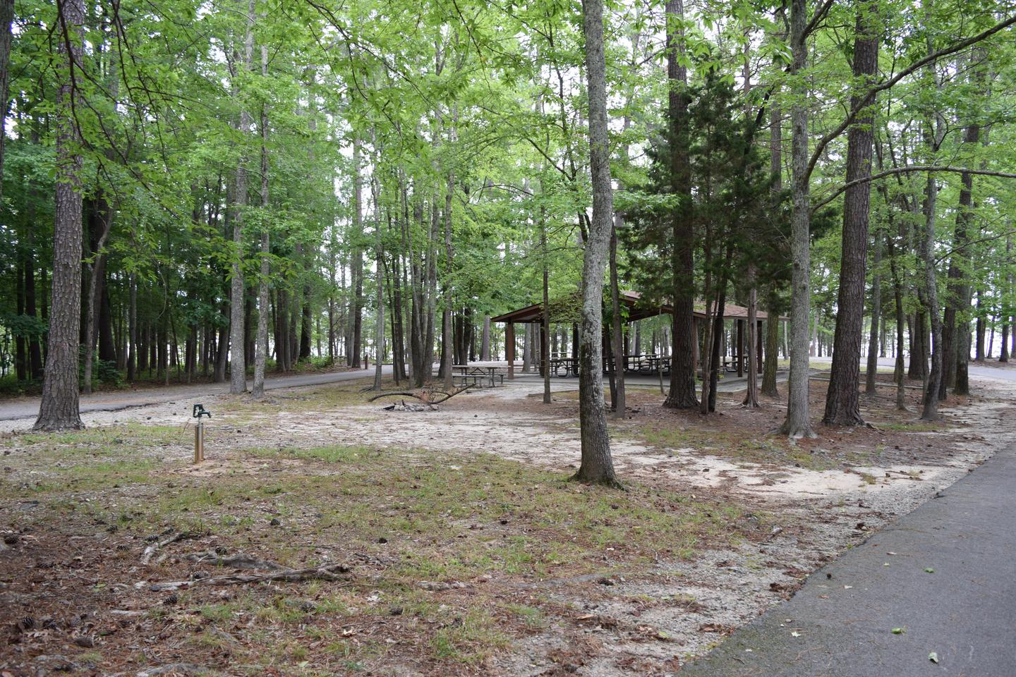 Piney Woods Group Camping Area ShelterWelcome to Piney Woods Group Camping Area! This is a picture of the shelter located within the camping area. You can also see another spigot that can be used for this area.