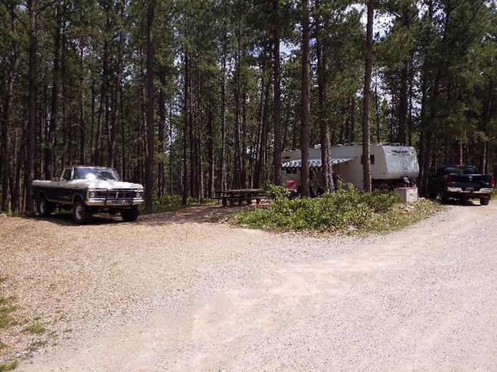 Camp Host Site