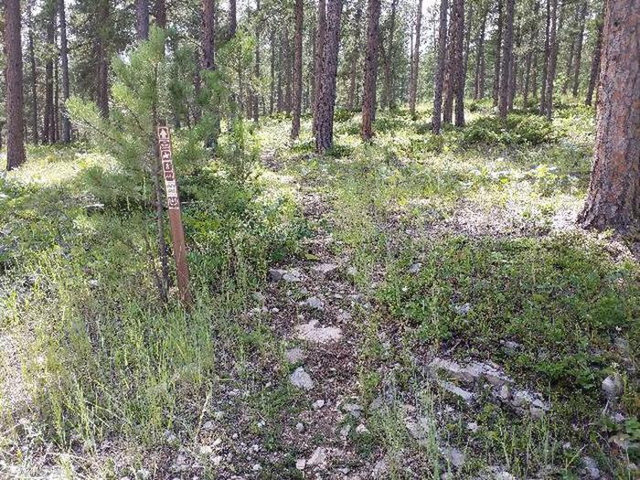 Rueter Trail