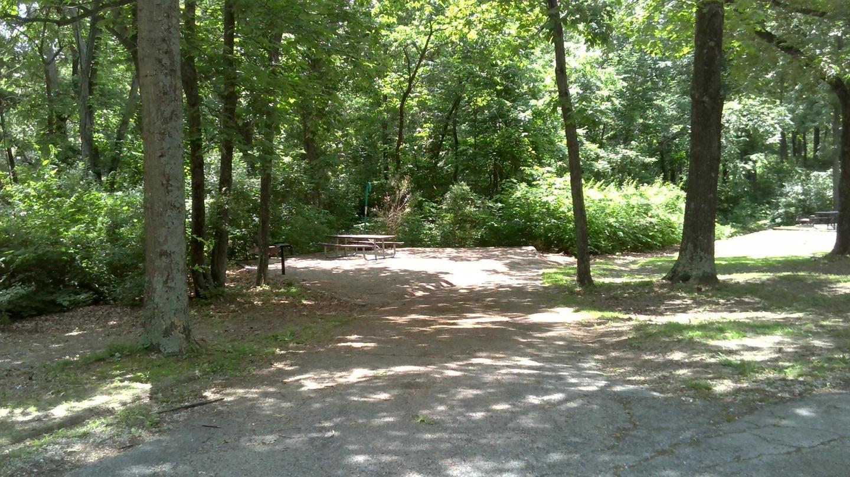 Site 23 Driveway