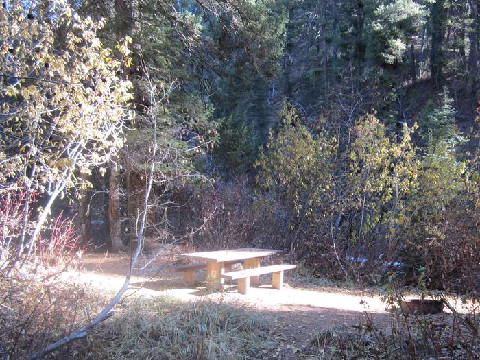 A picnic table in a circle of light.Some of the campsites at Ten Mile are tucked away in the greenery.