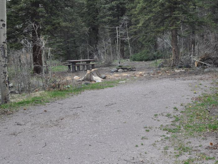 Lake Fork Campground Site 7