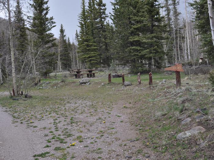 Lake Fork Campground Site 8