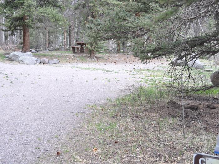 Lake Fork Campground Site 13