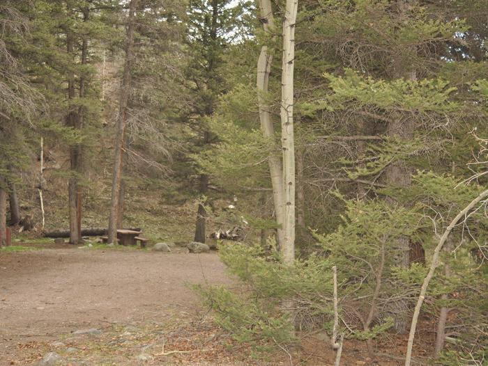 Lake Fork Campground Site 18