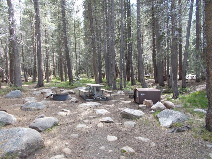 Tuolumne Meadows Tent SiteA66, Tuolumne Meadows Tent Site