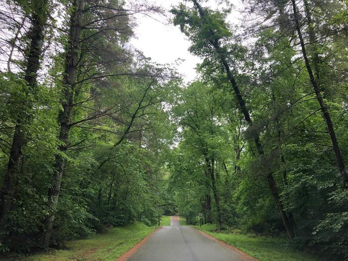 Pine SavannaEntrance to Bakers Run Campground