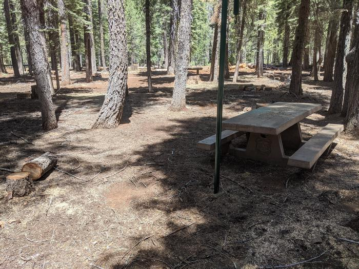 Horse Camp Site #3 photo 2Site #3 with picnic table and lantern post