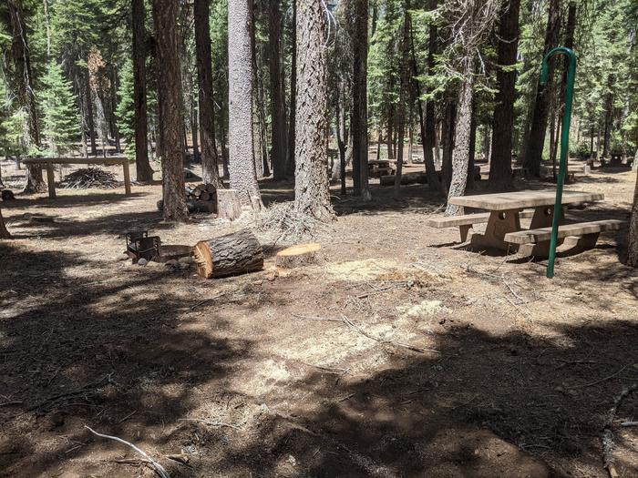 Horse Camp site #9 photo 2Site #9 with picnic table, lantern post, and hitching post visible