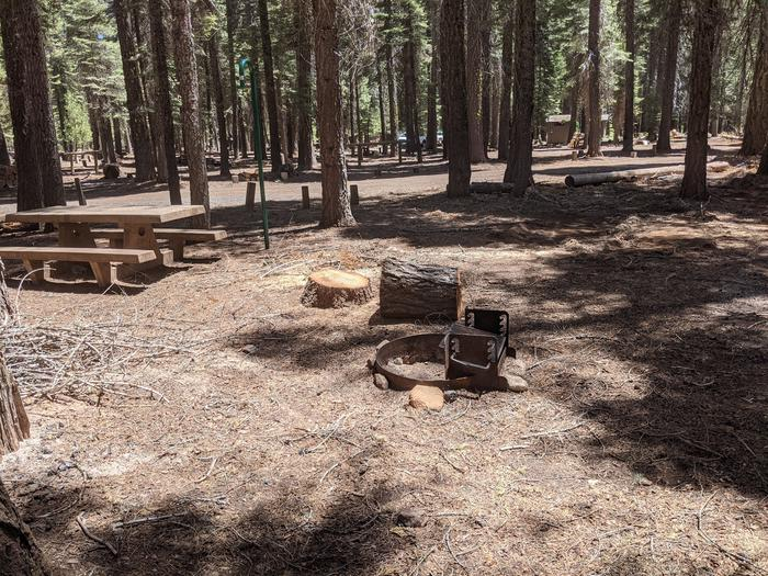 Horse Camp site #9 photo 3Site #9 with picnic table, lantern post, and fire ring visible. Restroom is in distance.