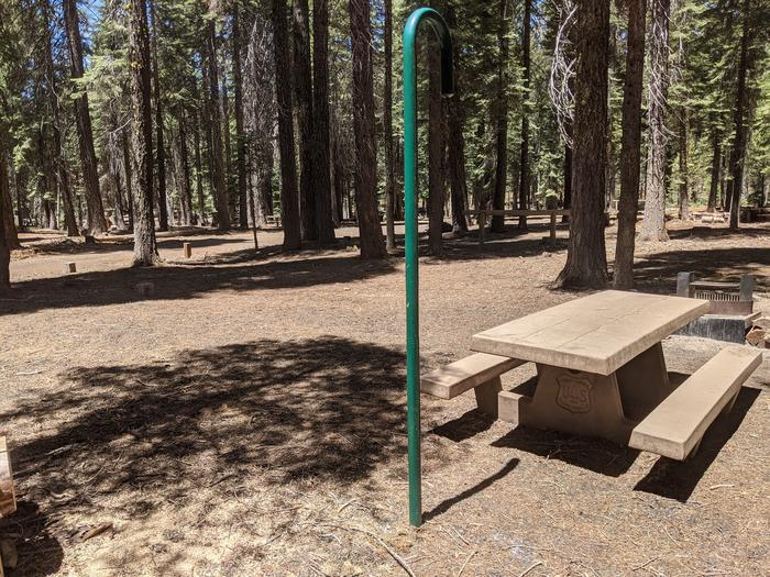 Horse Camp site #10 photo 2Site #10 with lantern post, picnic table, and large usable area visible