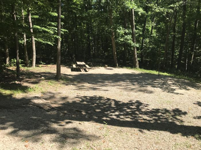 Large area for grilling and picnicking is a slight slope down from the main area with some tree roots you have to step on