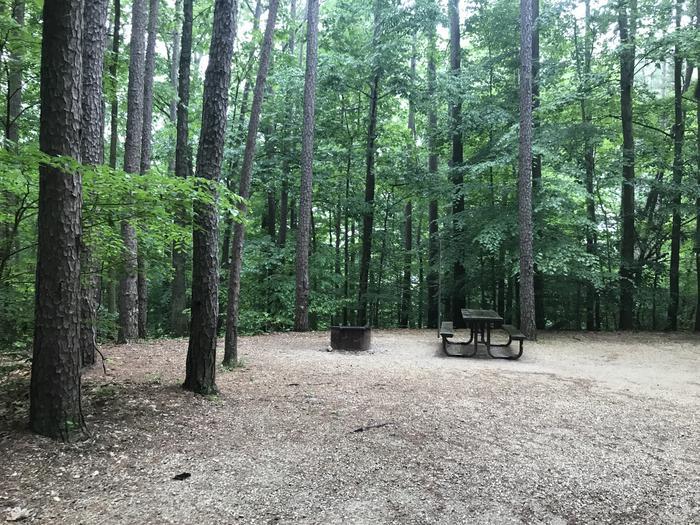 Pretty picnic table firing area