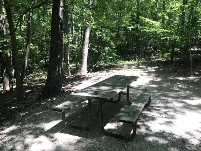 A very shaded area for your picnic table fire ring and any grilling or entertaining you might want to do