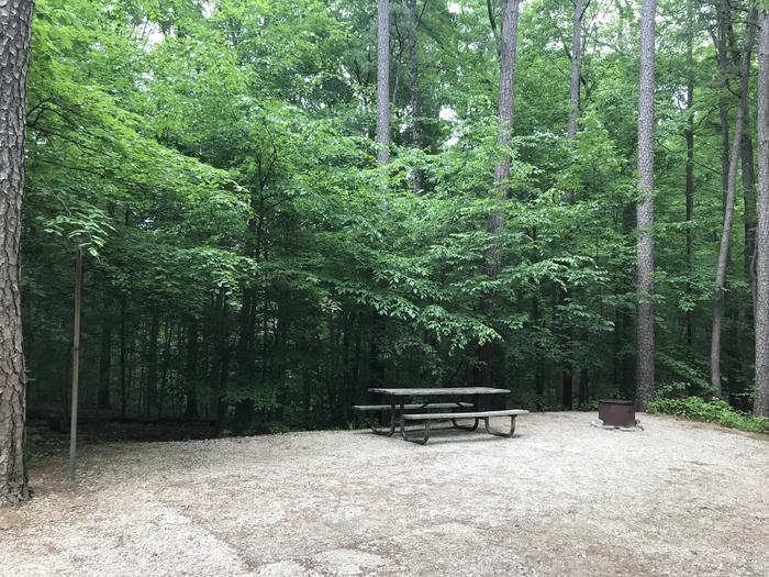 A nice setting along the side for your campfire Grill ad picnic table